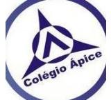 Sociedade Educacional Apice LTDA